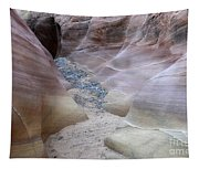 Dry Creek Bed 3 Tapestry