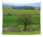 Dry Stone Wall And Twisted Tree Tapestry