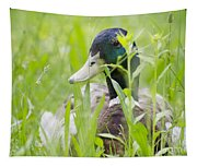 Duck In The Green Grass Tapestry