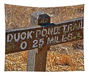 Duck Pond Trail Tapestry
