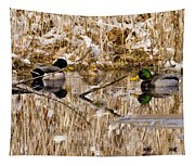 Ducks Reflect On The Days Events Tapestry