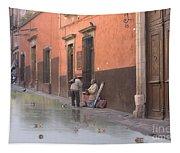 Ducks Swimming On Calle Reloje Tapestry