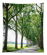 Dutch Country Road Tapestry