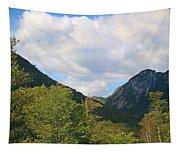 Eagle Cliff Seen Froom Boise Rock In Franconia Notch Tapestry