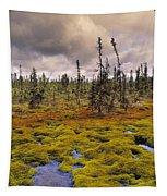 Eagle Plains, Yukon Territory, Canada Tapestry