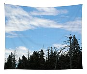 Eagles Nest Lake Tahoe Tapestry