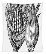 Ears Of Maize Tapestry