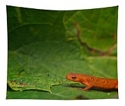 Easterm Newt Nnotophthalmus Viridescens 13 Tapestry