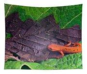 Eastern Newt Notophthalmus Viridescens 26 Tapestry