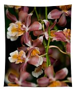 Emma's Orchid Tapestry