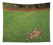 Empty Lawn With A Little Heap Of Leaves Scraped Together Tapestry