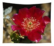 Englemann's Prickly Pear Cactus  Tapestry