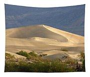 Evening Dune Tapestry