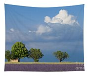 Evening In Provence Tapestry