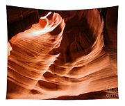 Face In The Canyon Tapestry