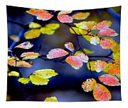Fall Color Change Tapestry