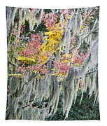 Fall Colors In Spanish Moss Tapestry
