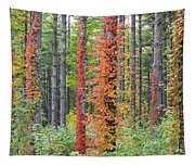 Fall Ivy On The Trees Tapestry
