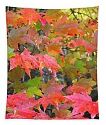 Fall Leaves Filtered Tapestry