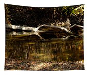 Fall Log Reflection Tapestry