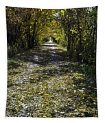 Fall On Macomb Orchard Trail Tapestry