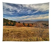 Fall On Whitetop Mountain Tapestry