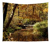Fall River Colors Tapestry