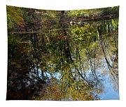 Fall Sand Bar Reflections Tapestry