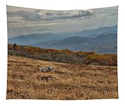 Fall Scene On Whitetop Mountain Va Tapestry