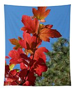 Fall Snowball Branch Tapestry