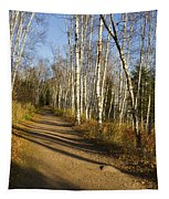 Fall Trail Scene 35 B Tapestry