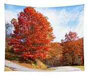 Fall Tree By The Road Tapestry