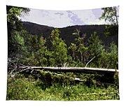 Fallen Tree Tapestry