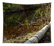 Fallen Tree Path Tapestry