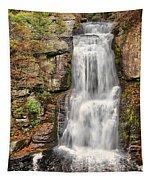 Falls At Bushkill Tapestry
