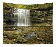 Falls Panorama Tapestry