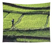 Farmer In Rice Paddy, Elevated View Tapestry