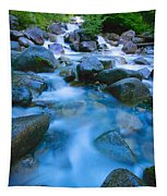 Fast-flowing River Tapestry