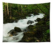 Fast Water Tapestry