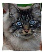 Fat Cats Of Ballard 9 Tapestry