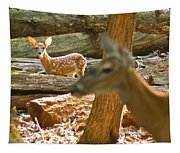 Fawn 2 7769 Tapestry