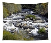 Feather River White Water Tapestry