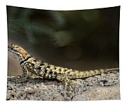 Female Desert Spiny Lizard  Tapestry