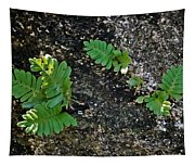 Fern And Coquina Tapestry