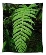 Fern Frond 0576 Tapestry