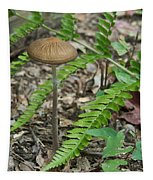 Fern Frond And Mushroom 5 Tapestry