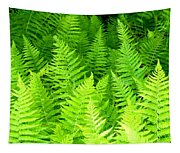 Ferns Galore Filtered Tapestry
