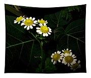Feverfew In Bloom Tapestry
