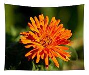 Firey Sunburst Tapestry