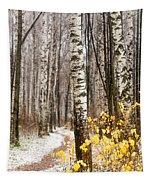 First Snow. Hidden Path Tapestry